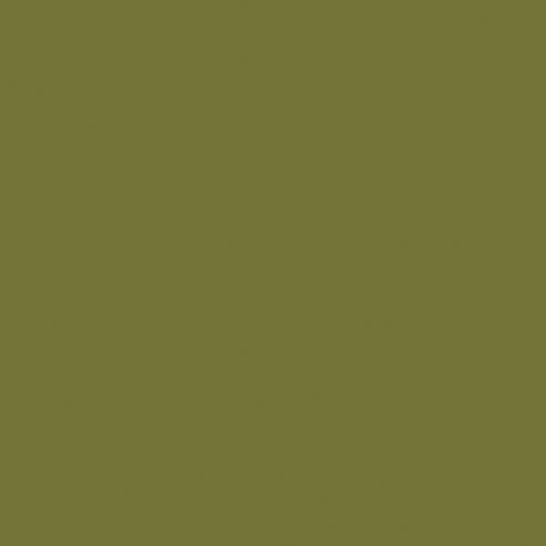 Compact (HPL) 0612 Olive