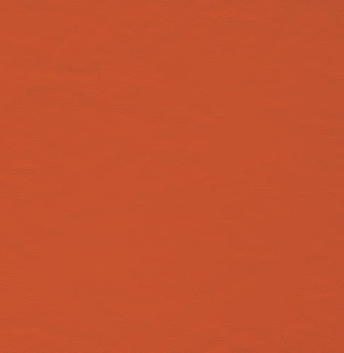 Bono orange 6L5