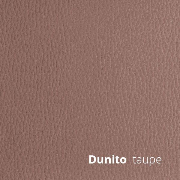 Dunito
